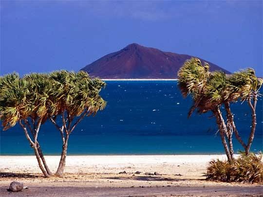 Red-Sea-Coast